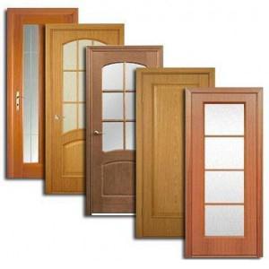 Двери, дверные блоки Бронниц
