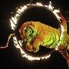 Цирки в Бронницах